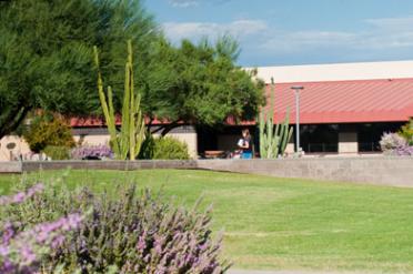 Desert Arboretum at Polytechnic Campus